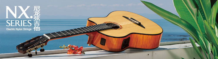 /products/musical-instruments/guitars/acousticguitar/silentnylonstringguitar/nx_series/index.html
